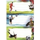 HERMA Buchetiketten -Fußball- 76 x 35 mm