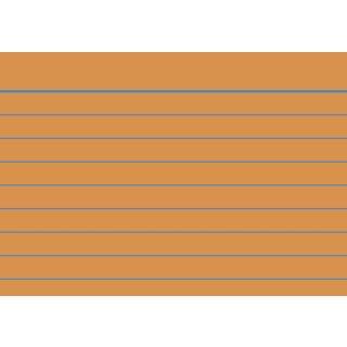 Brunnen Karteikarten A8 liniert, orange, VE=100 Stück