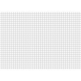 Brunnen Karteikarten A5 kariert, weiß VE=100 Stück