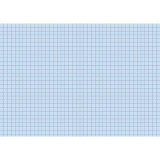 Brunnen Karteikarten A5 kariert, blau VE=100 Stück