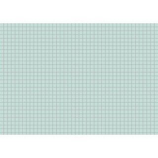 Brunnen Karteikarten A5 kariert, grün VE=100 Stück