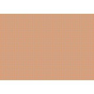 Brunnen Karteikarten A5 kariert, orange VE=100 Stück