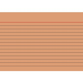 Brunnen Karteikarten A6 liniert, orange VE=100 Stück