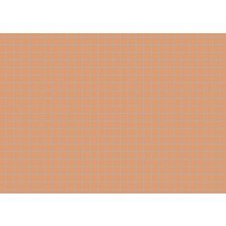 Brunnen Karteikarten A6 kariert, orange VE=100 Stück