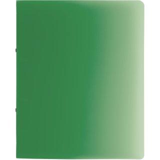 Brunnen Ringbuch Fact!A4 1,6cm Rückenbreite, PP, 2-Ring grün transparent (Fb.50)