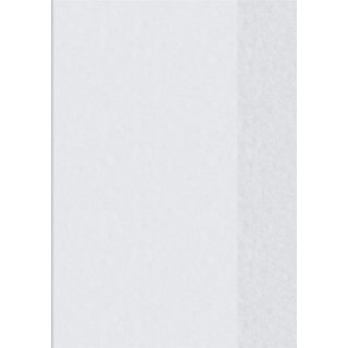 Brunnen Hefthülle A6 Hochformat  transparent, Folie, Farbe.:99 = farblos